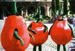Dressed as tomatoes during the gotcha